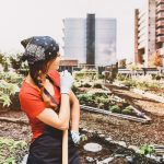 Everything you need to know about becoming the ultimate guerrilla gardener in your city