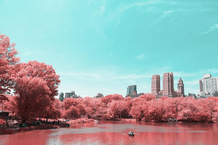 9_Central Park Infrared