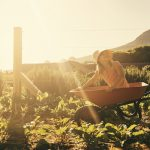Research shows that gardening makes you healthier and more relaxed