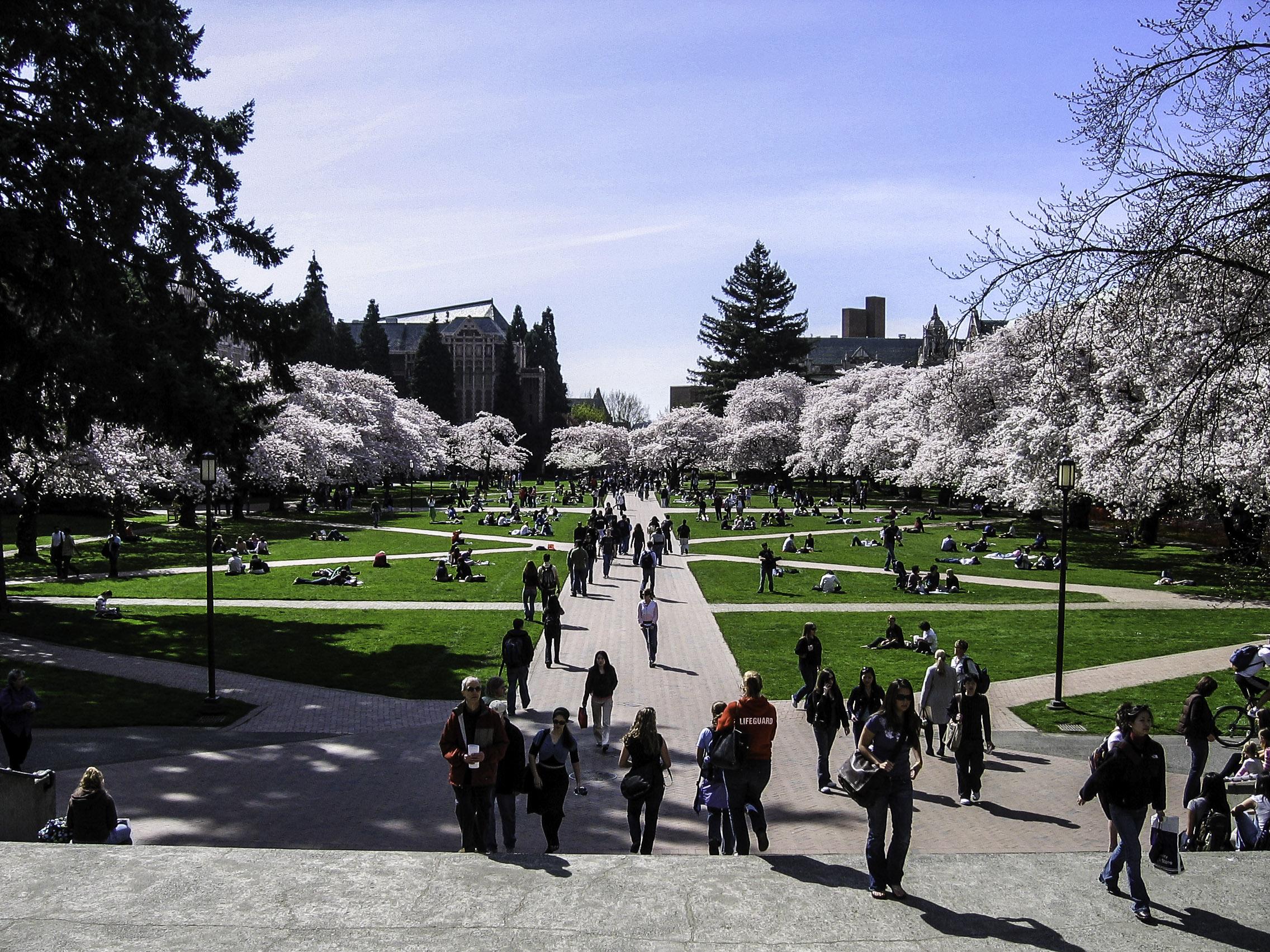 """University of Washington quad in spring in Seattle"" copyright CC0 from goodfreephotos.com"