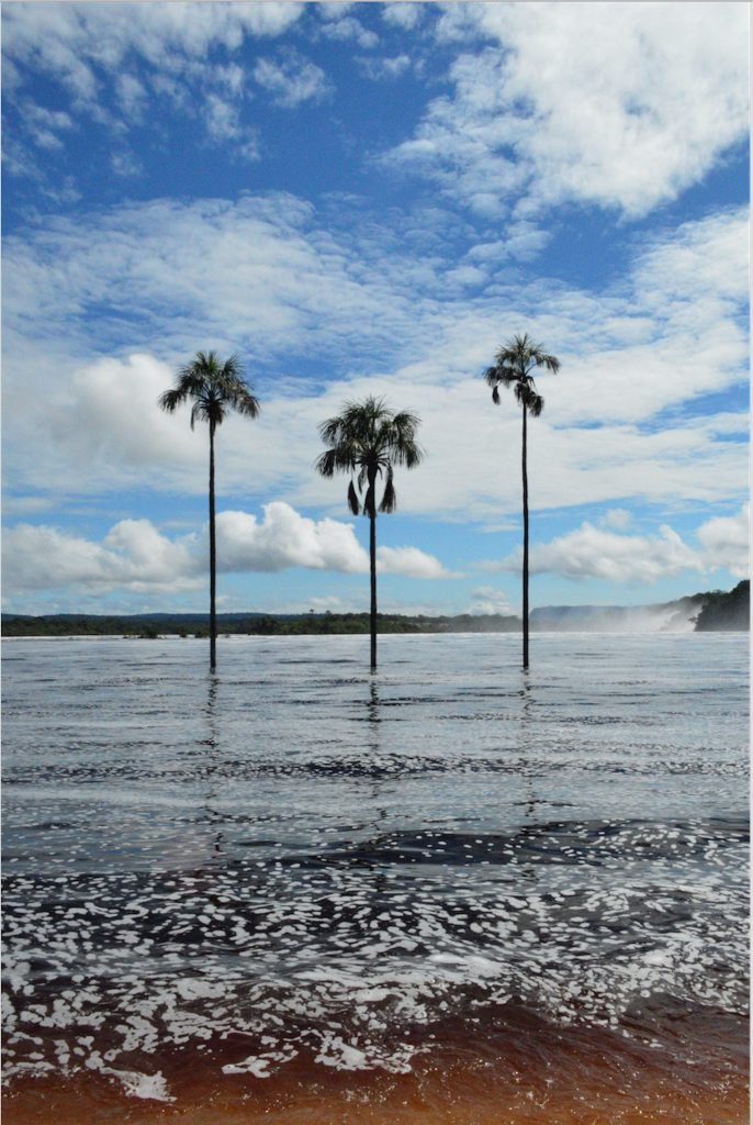 Beach on the red waters of Canaima National Park.