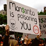 GMO Plant In Argentina Is Being Dismantled Thanks To Protestors