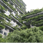 CHINA IS BUILDING SKYSCRAPERS FULL OF TREES