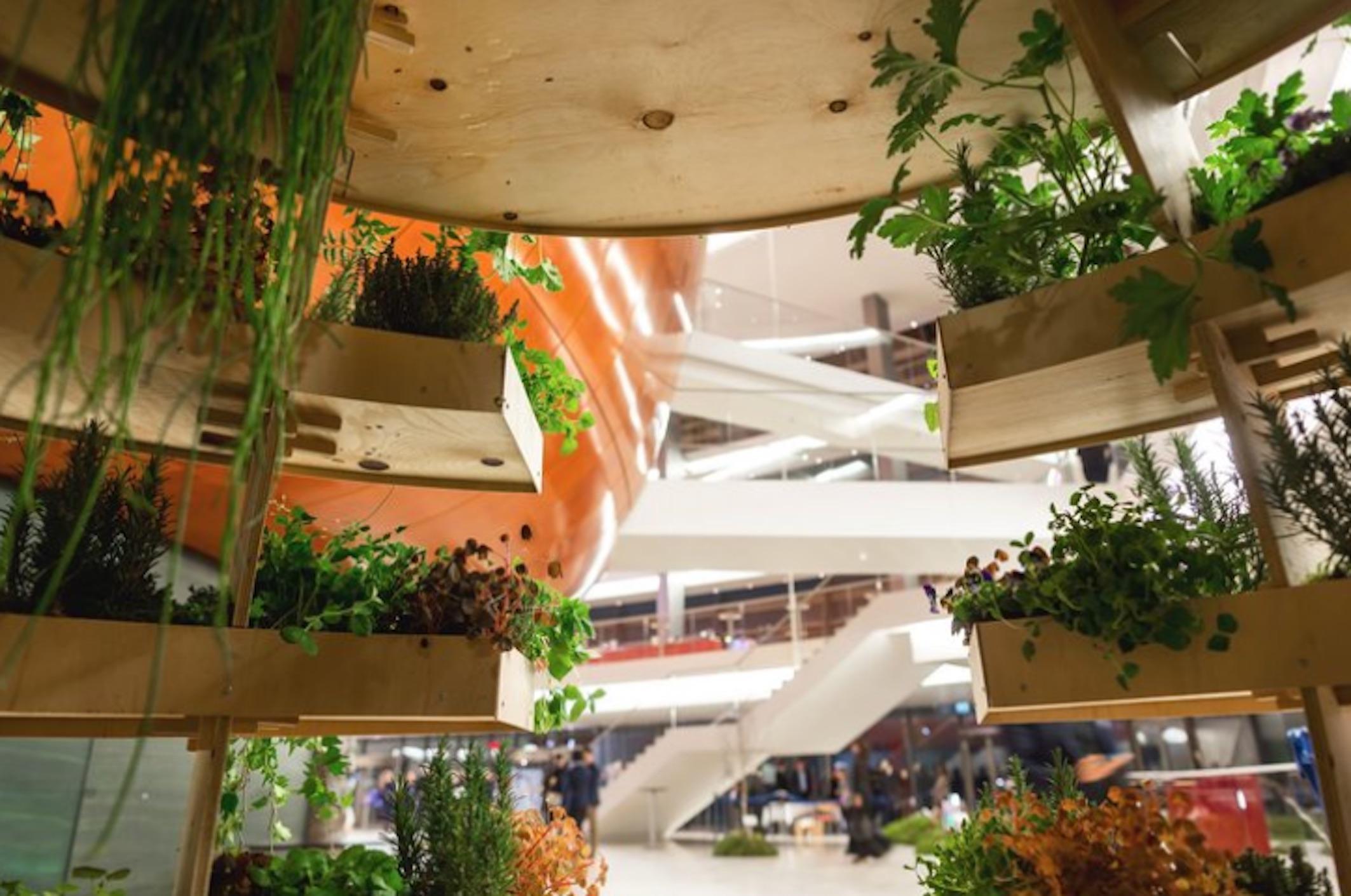 Ikea garden sphere free plans for a sustainable garden for Sphere garden design