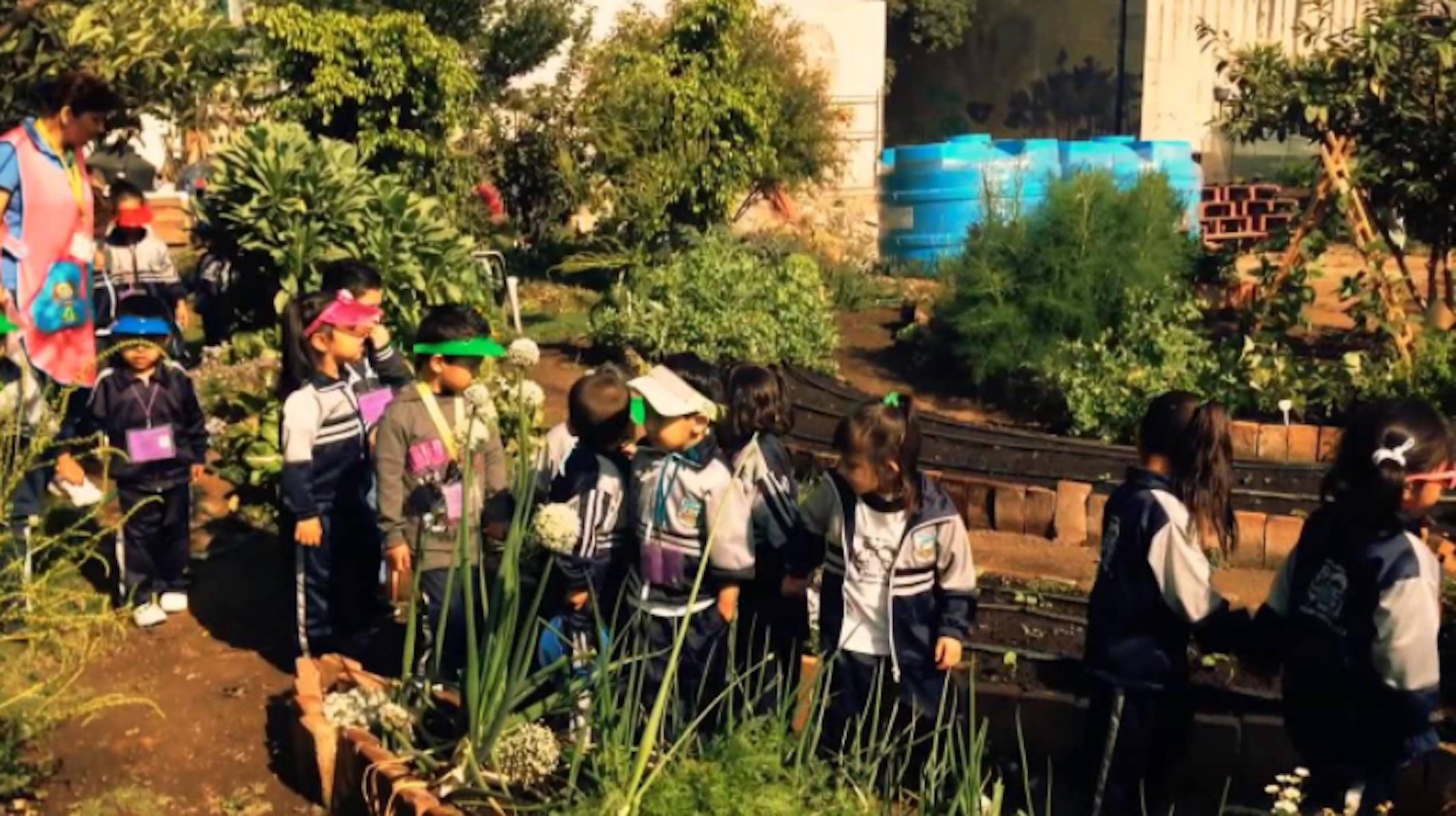 Urban garden ideas: these urban garden designs will make your city green
