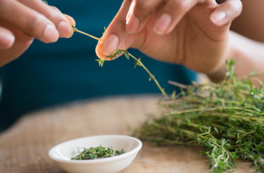 herb garden ideas_thyme