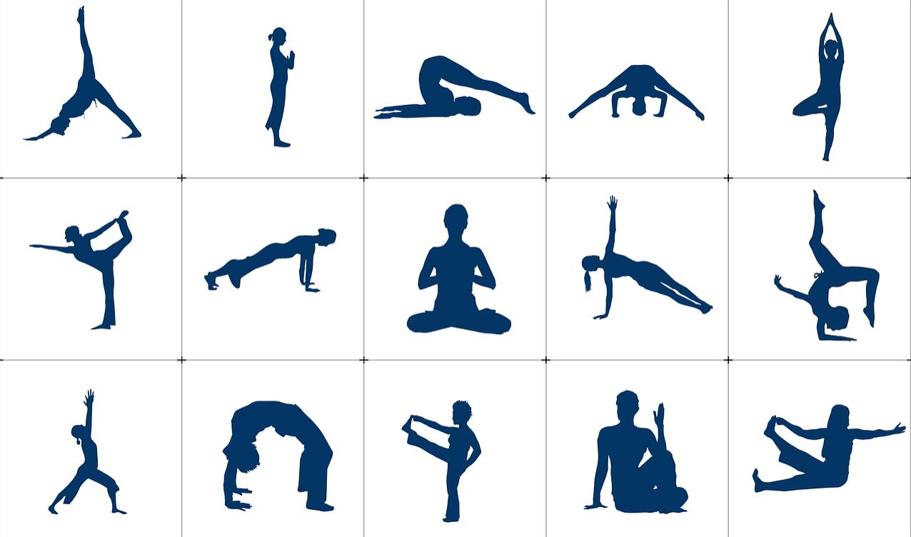 Hatha Yoga What Is It