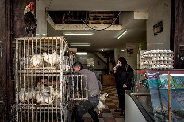 West Bank, Israel April, 21, 2014. Photo Ken Cedeno