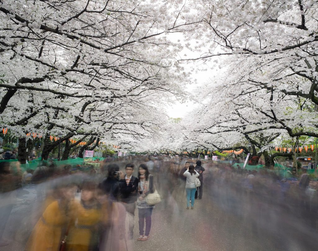 Photography of Tokyo in motion_1