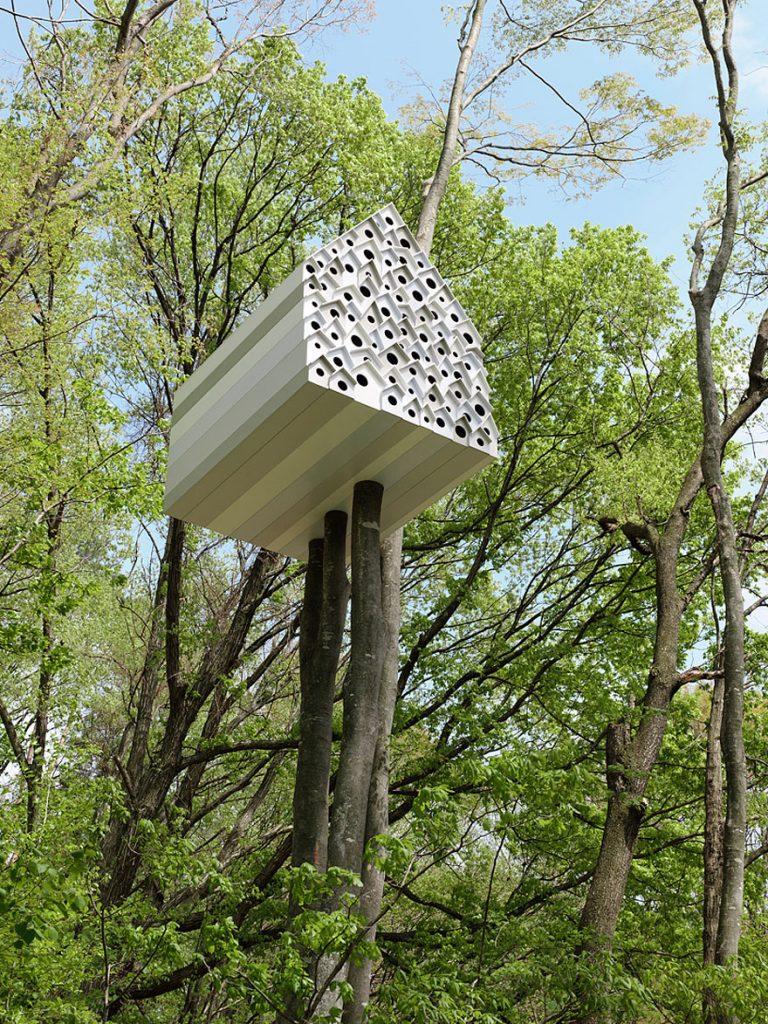 11_tree houses