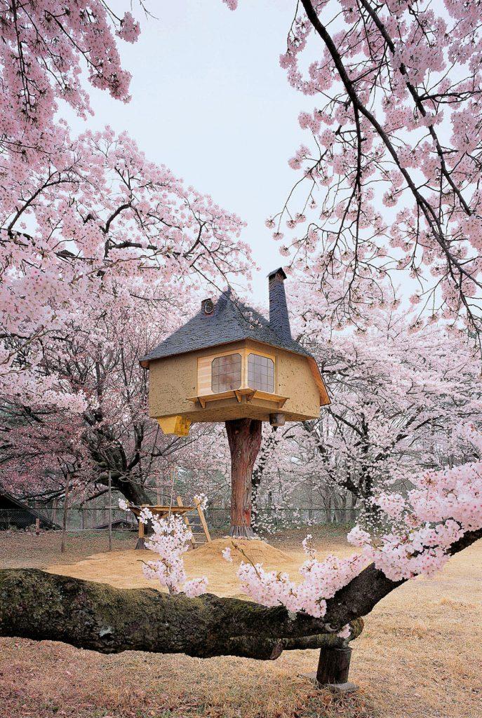 15_tree houses