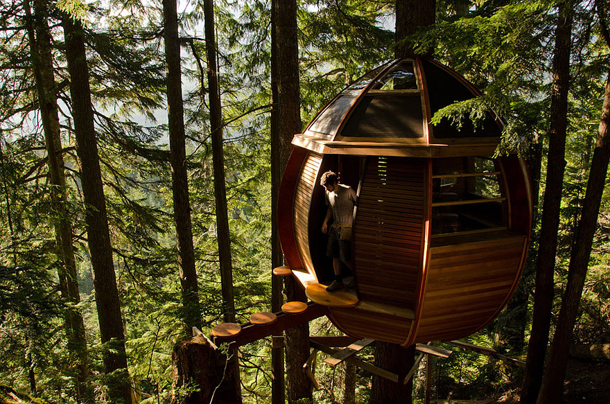 1_tree houses