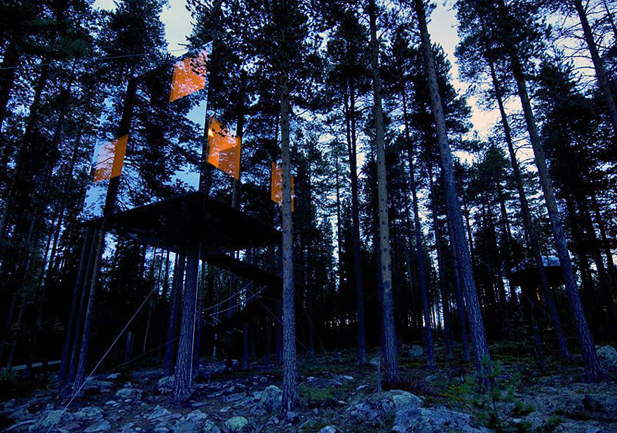 2_tree houses