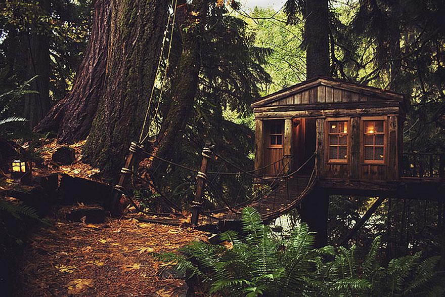 6_tree houses
