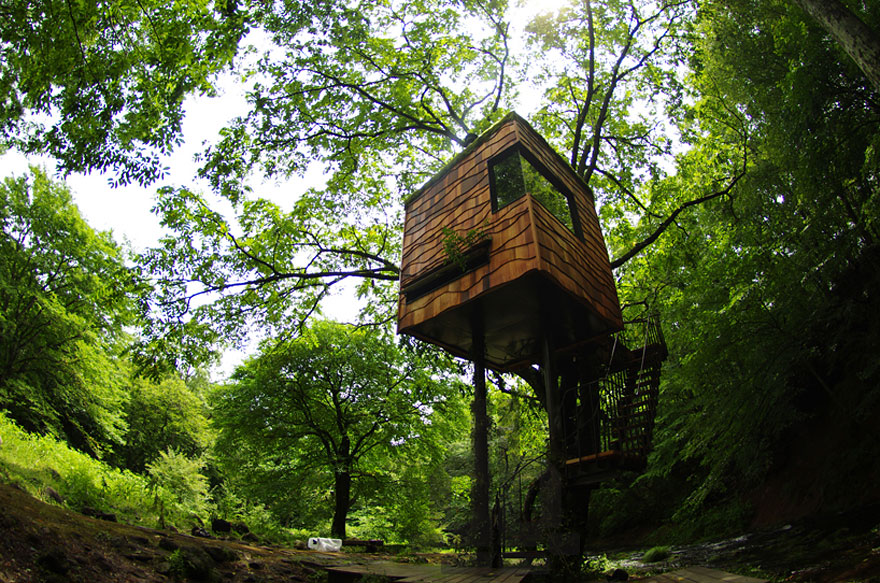 9_tree houses