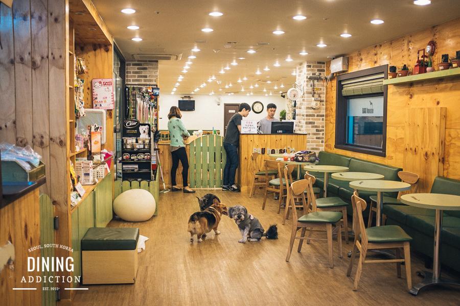 2_puppy cafe