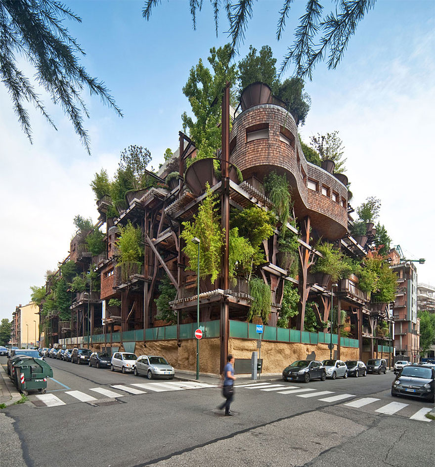 2_urban tree house