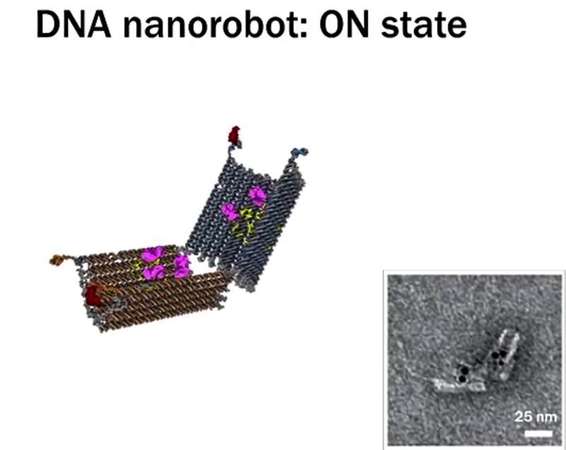 4_DNA nanobots