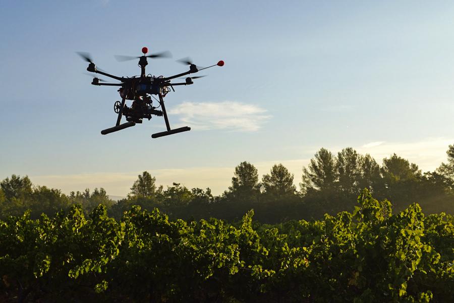 2_Drone reforestación