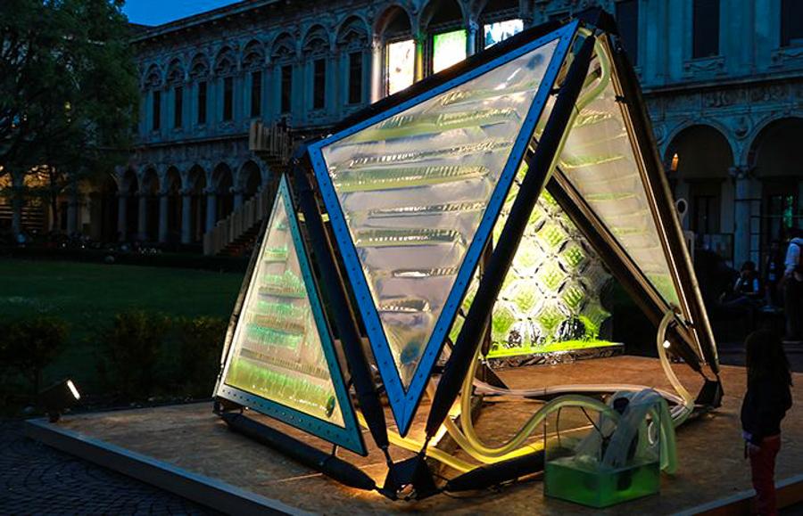 8_urban algae canopy