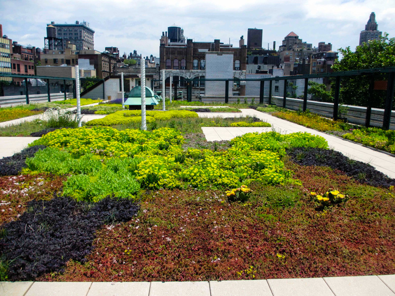 5_solar green roofs NYC