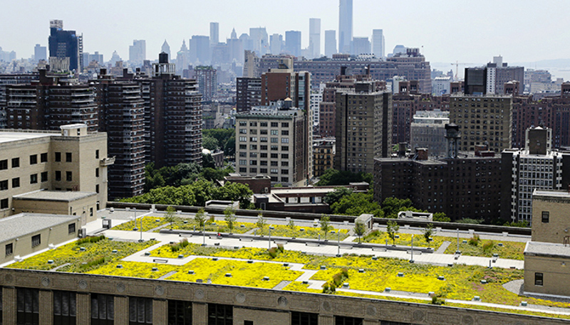8_solar green roofs NYC