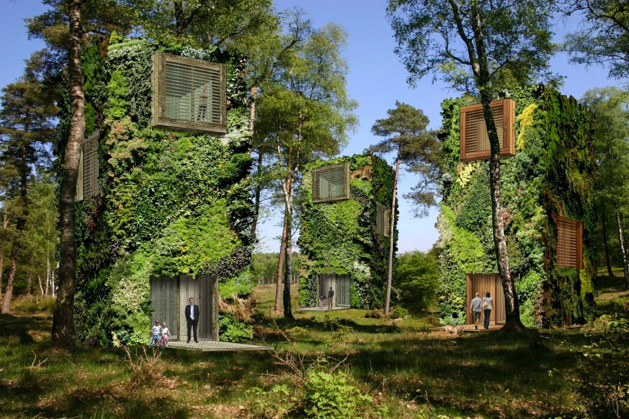 2_off-the-grid homes forest