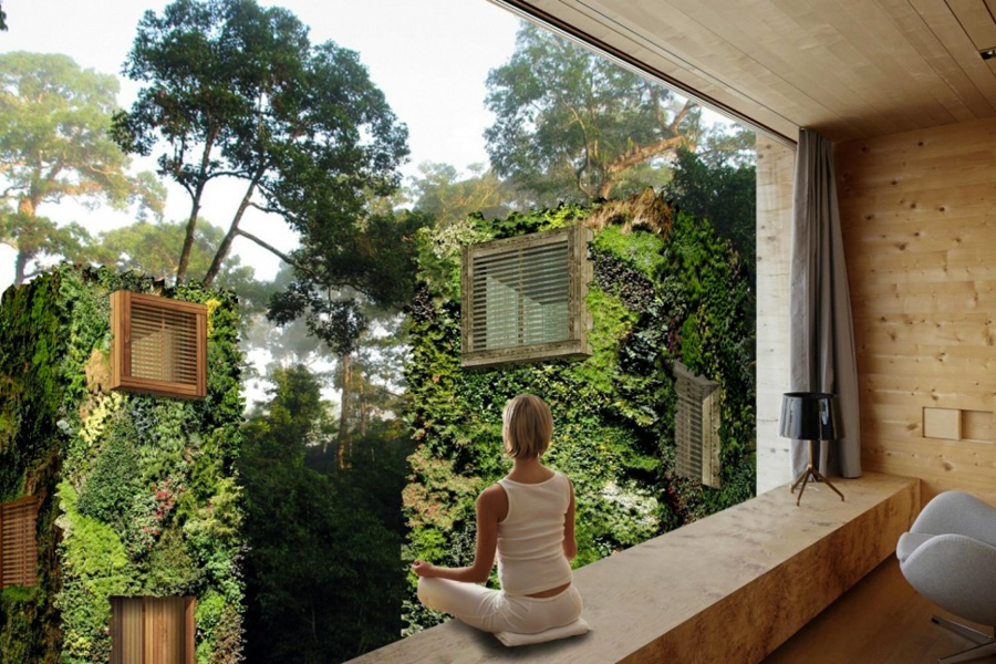 3_off-the-grid homes forest
