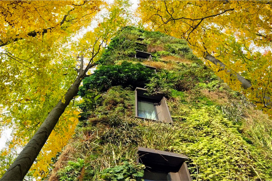 4_off-the-grid homes forest