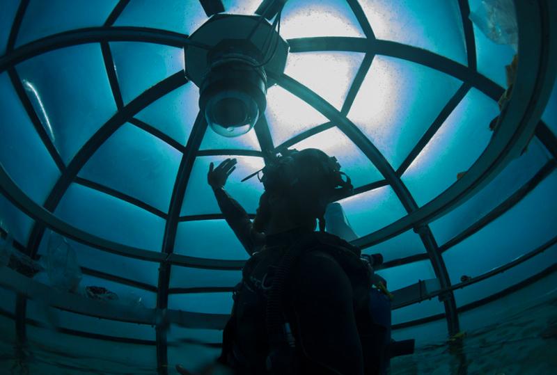 5_underwater greenhouse