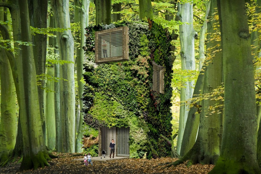 6_off-the-grid homes forest