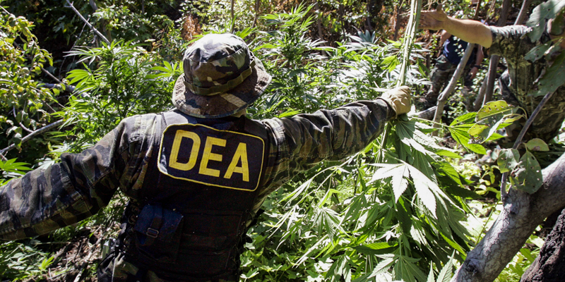 9_18 states allow medical Marijuana