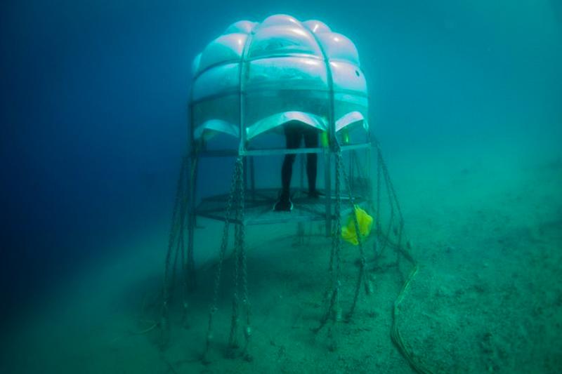 9_underwater greenhouse
