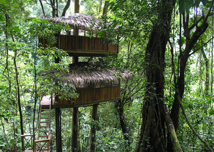 14_tree house community in Costa Rica