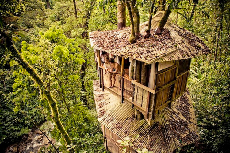 15_tree house community in Costa Rica
