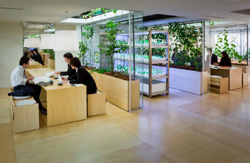 2_urban farm offices