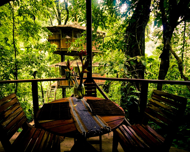 4_tree house community in Costa Rica