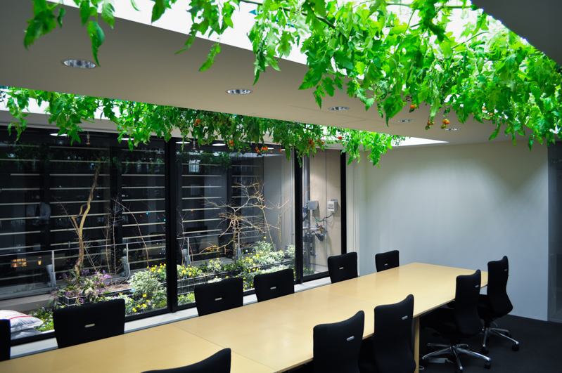 5_urban farm offices