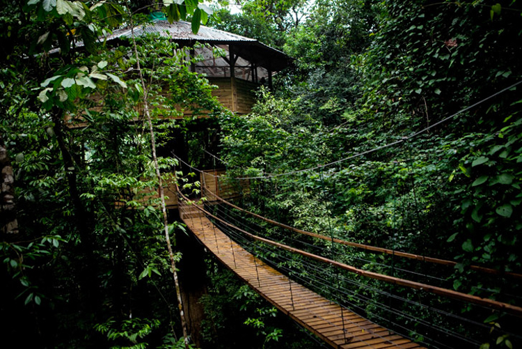 6_tree house community in Costa Rica