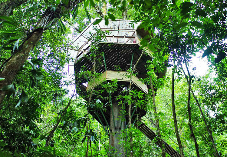 7_tree house community in Costa Rica