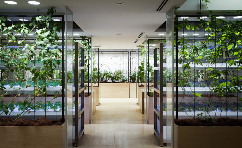 7_urban farm offices
