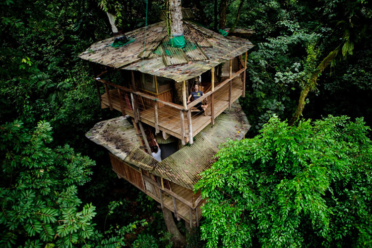 8_tree house community in Costa Rica