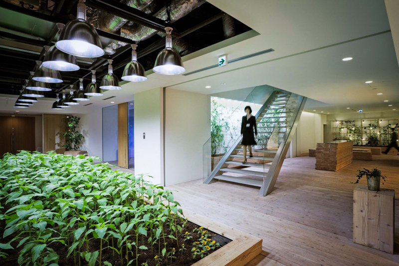 8_urban farm offices