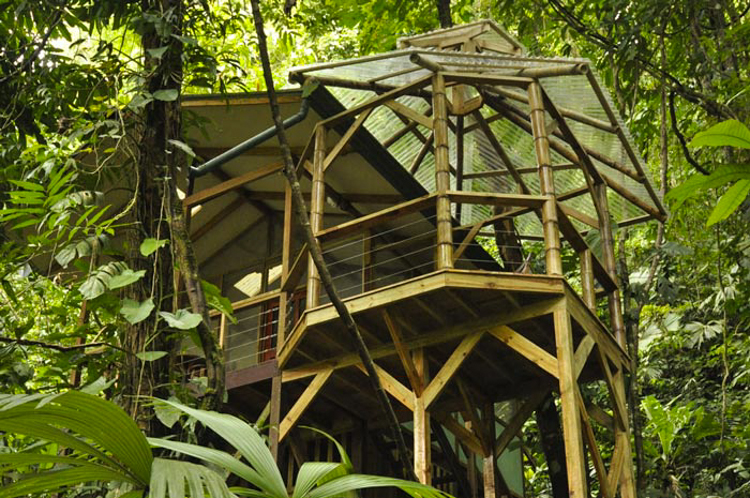 9_tree house community in Costa Rica