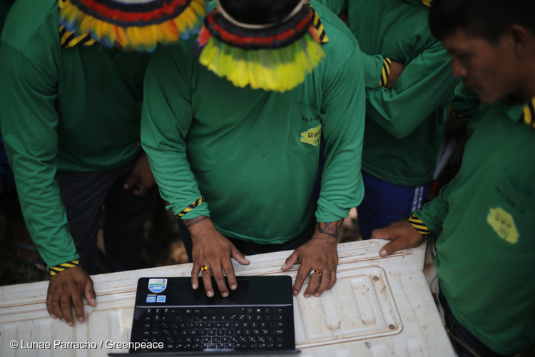3_Brazil's forest villagers Illegal Loggers