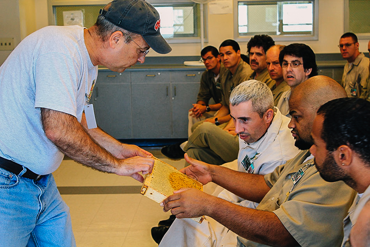 4_Sustainability programs in prisons