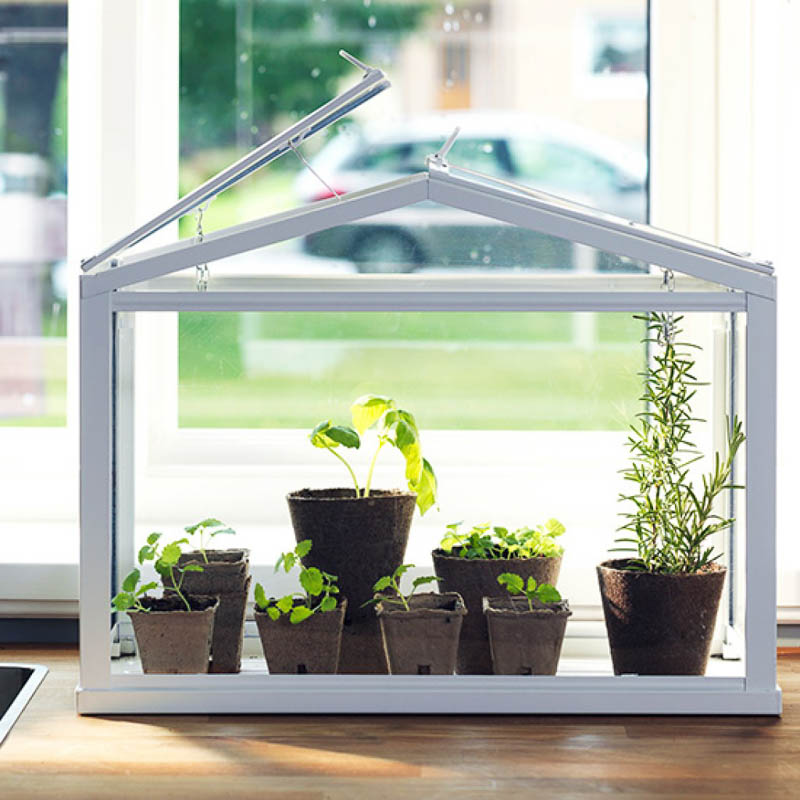 Terrific Ikeas Mini Greenhouse Lets You Grow Your Favourite Plants Home Interior And Landscaping Oversignezvosmurscom