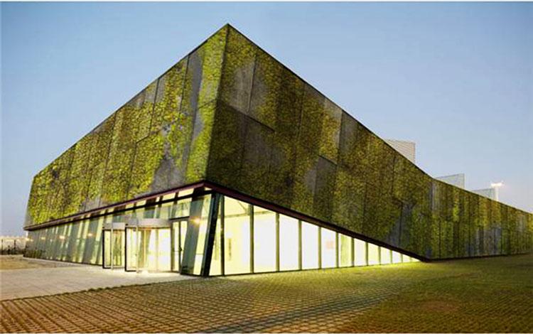 2_Moss growing concrete CO2