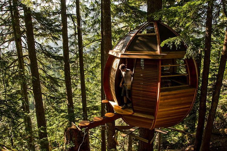 2_treehouse lifestyle