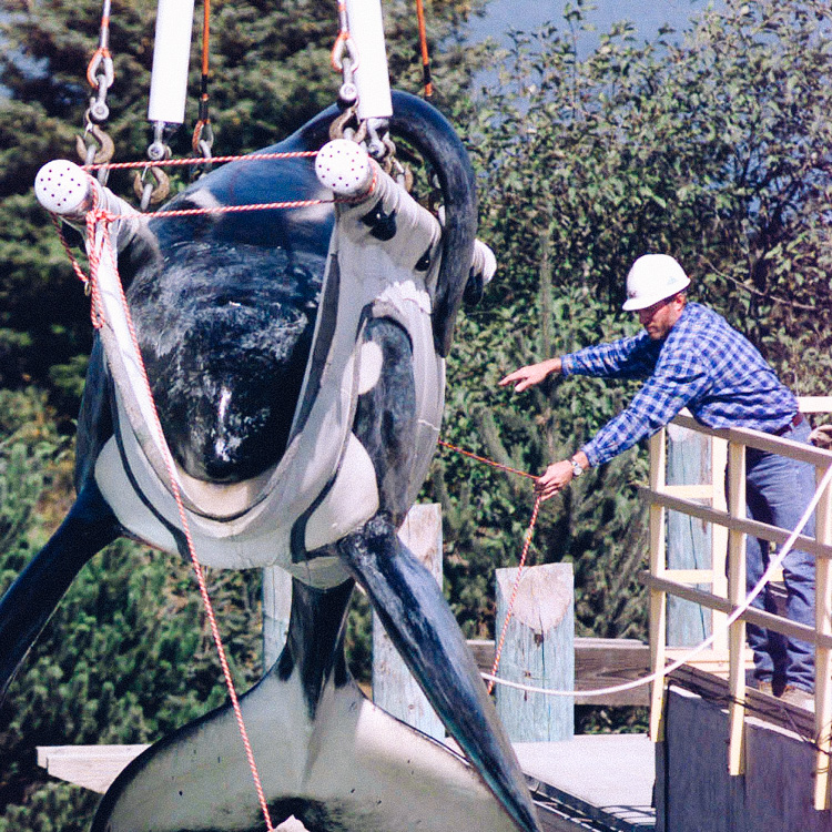3_California Banning SeaWorld